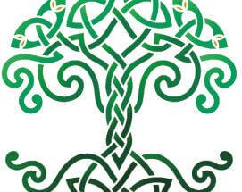 Tree Of Life | 100 Beliefs