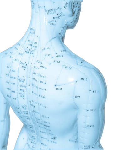 Acupressure meridians charts: points location on all meridians